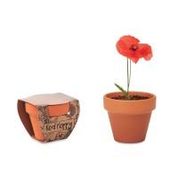 Red Poppy - Terracotta-Topf Mohnblume