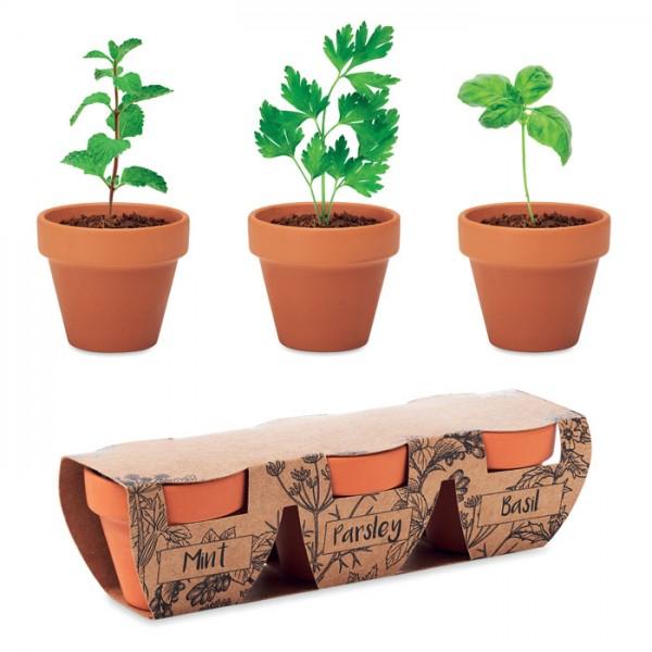 Flowerpot - Terracotta-Set Kräuter